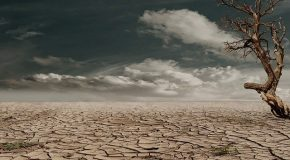 Climat : ce qu'il faut retenir du nouveau rapport choc du Giec